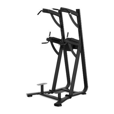 舒华 SH-6888 单双杠及提腿腹肌组合练习器